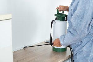 Pest Control Worker Spraying
